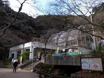 大阪府 箕面公園昆虫館の画像1