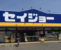 デイリーケアセイジョー 毛呂山長瀬店