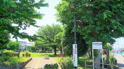 ふじみ野市/亀久保中央公園の画像2