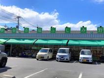 田中青果/ふじみ野店