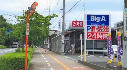 ビッグ・エー/富士見鶴馬店の画像1