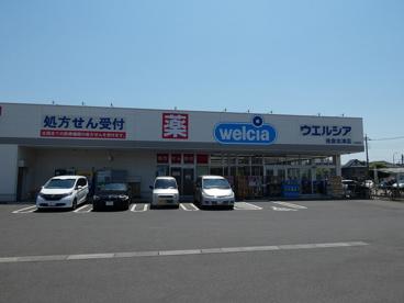 ウエルシア 佐倉志津店の画像1