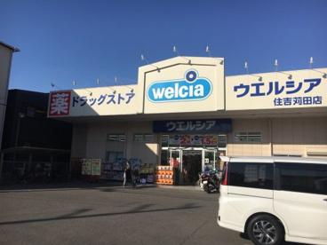 ウエルシア住吉苅田店の画像1