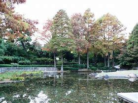 近松公園の画像