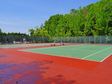 青山近隣公園の画像5