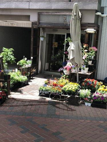 フラワーショップ光琳堂 鶴見店の画像