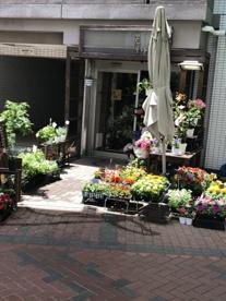 フラワーショップ光琳堂 鶴見店の画像1