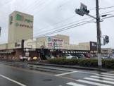 ドミー 大樹寺店