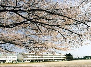 春日部市立桜川小学校の画像1