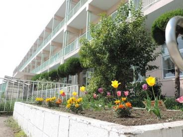 八潮市立八幡小学校の画像1
