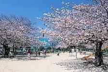 大曽公園の画像1
