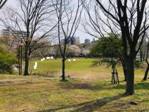 茅ケ崎市 中央公園