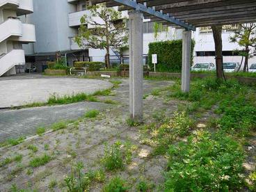 奈良市営西之阪住宅公園の画像3