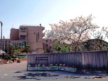 草加市立氷川小学校の画像1
