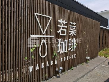 若葉珈琲 土井店の画像2