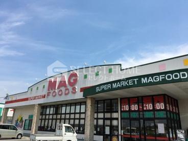 マグフーズ 中島店の画像1