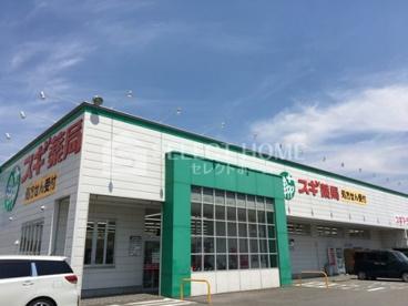 スギ薬局中島店の画像1