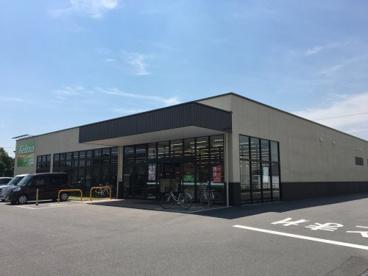 Felna(フェルナ) 中島店の画像1