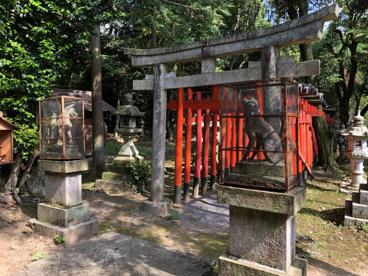 姫丸稲荷大明神(石上町)の画像1