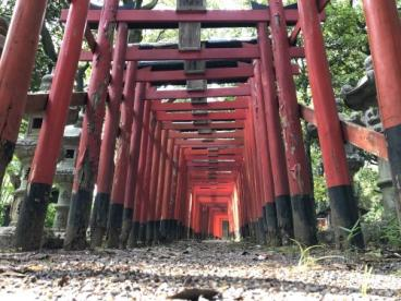 姫丸稲荷大明神(石上町)の画像3