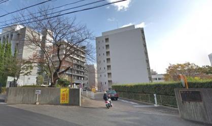 神戸大学の画像1