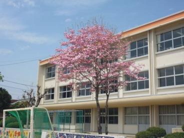 前橋市立若宮小学校の画像1