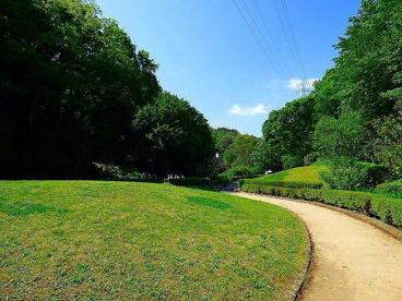 東高根森林公園の画像1