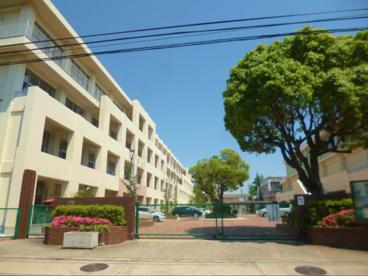 兵庫県立鳴尾高校の画像1