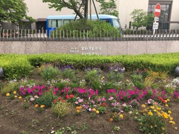 愛知学泉大学 岡崎キャンパスの画像1