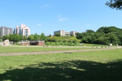 長池公園の画像3
