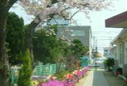和井田保育園の画像1