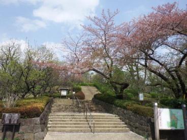 世田谷区羽根木公園の画像1