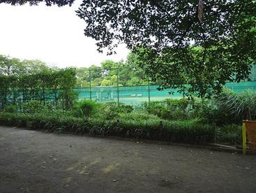 羽根木公園テニスコートの画像1