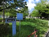 椎津第2公園