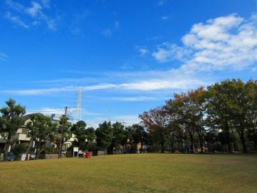 王禅寺公園の画像1