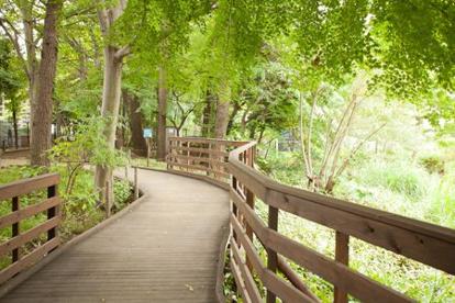 読書の森公園の画像1