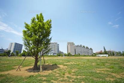 桃井原っぱ公園の画像1