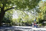 鯉ヶ渕公園