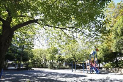 鯉ヶ渕公園の画像1