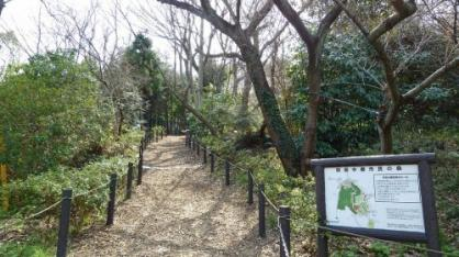 駒岡中郷市民の森の画像1