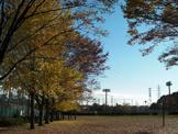 東大和市上仲原公園野球場