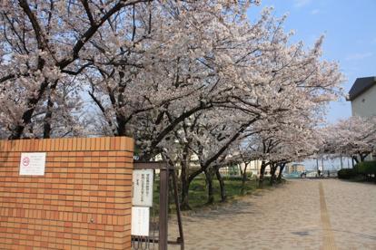 堺市立浜寺中学校の画像1