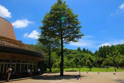 生田緑地の画像1