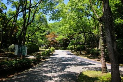 生田緑地の画像3