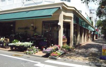 KINOKUNIYA 国立店の画像2