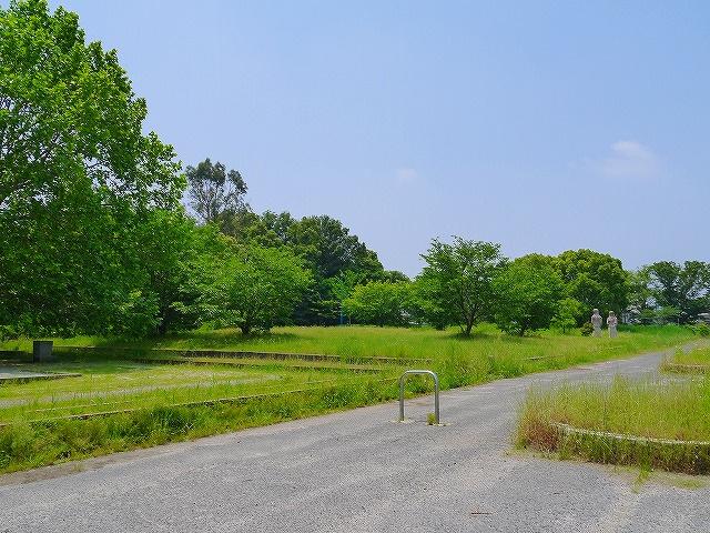 柏木公園の画像