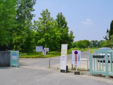 柏木公園の画像4