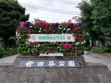 世田谷公園の画像1