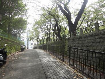 幸ケ谷公園の画像1