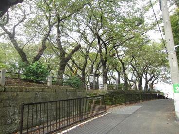 幸ケ谷公園の画像2